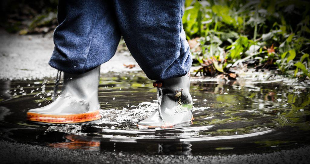 """Qualitätsgemeinschaft Bio-Mineralwasser e.V. veröffentlicht """"Schwarzbuch Wasser"""""""