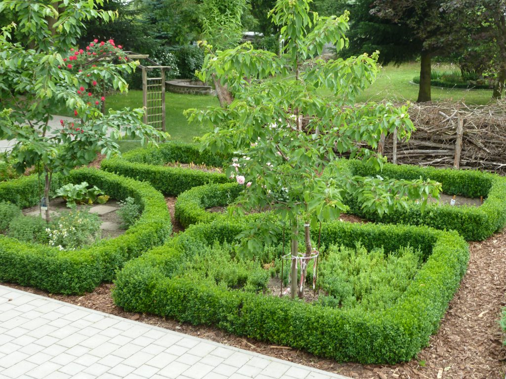 Schulgarten der Naturparkschule Wilhelm Gentz