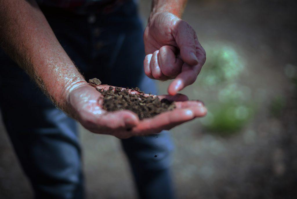 Bio und Bauern zusammenbringen