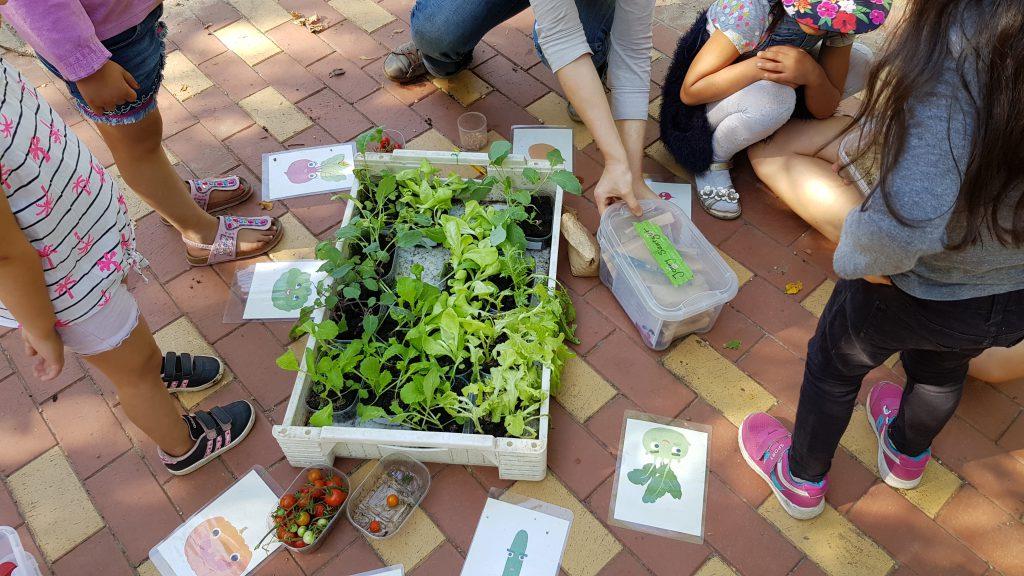 KITA Sonnenschein: Urbaner Nachhall mit Kindern und Familien