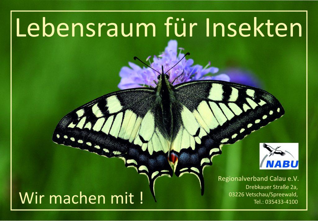 Lebensraum für Insekten