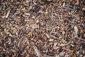 Boden mit braunen Blättern