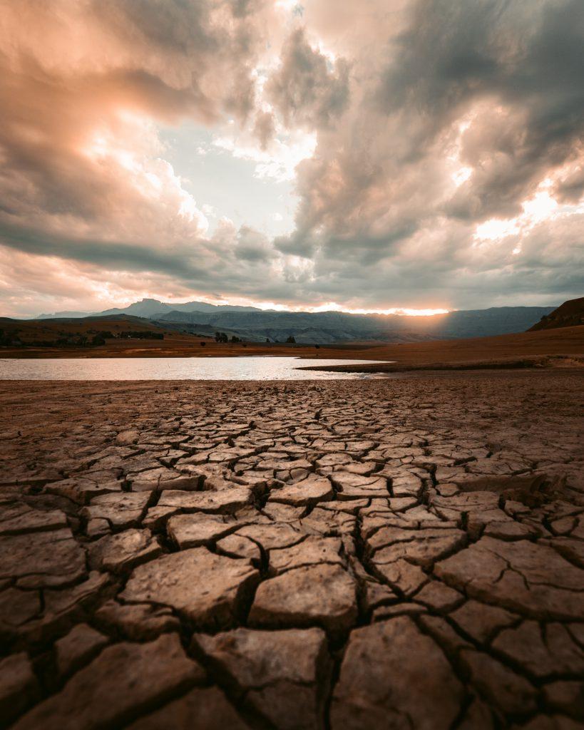 Leben in der Klimakrise